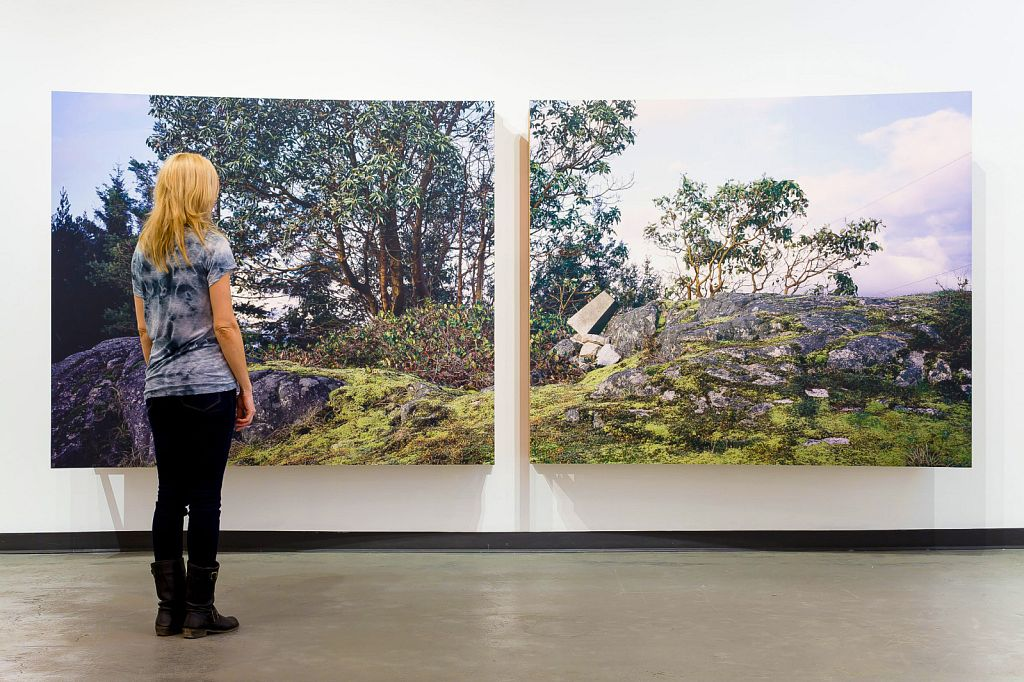 """no. 5: The Bluff (Pursuant to Supreme Court of B.C., Vancouver Registry #S062778), 2007, Lightjet prints on Sintra, rotary oak plywood, and brass and steel screws, 180 x 68 x 20""""; Comox Valley Art Gallery, 2011"""